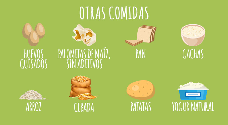 animigo-es-cats-can-eat-other-foods-info