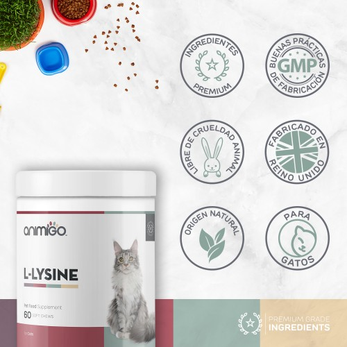 /images/product/package/l-lysine-6-es-new.jpg